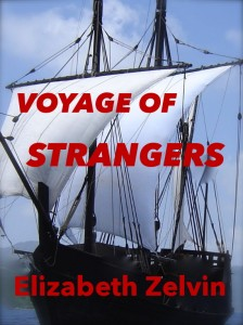 Voyage of Strangers book cover