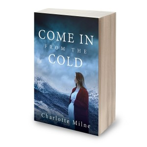 Come in from the Cold book cover